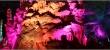 Aven Armand: Märchenwald aus Licht und Stein